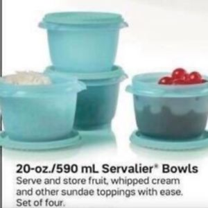 Set of 4-20oz Tupperware Servalier one touch bowls